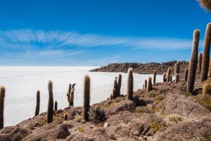 Insel Incahuasi in Bolivien