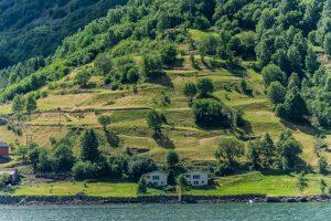 Fruchtbares Fjordland