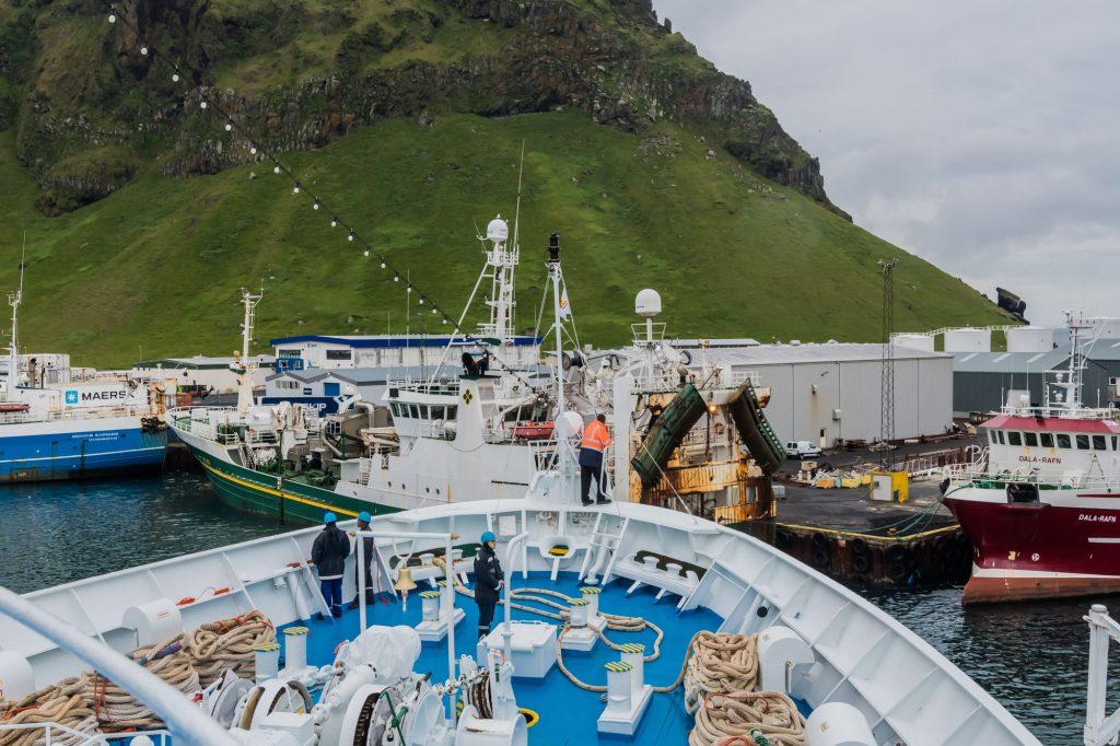 MS Ocean Majesty im Hafen von Heimaey
