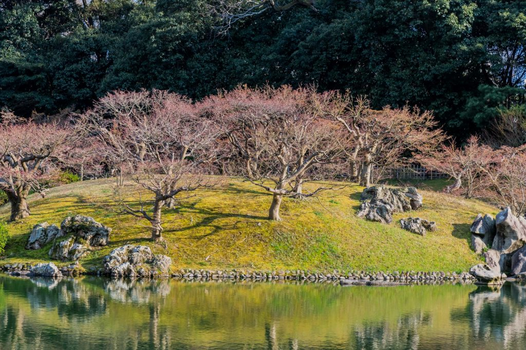 Teichinsel im Ritsurin Park auf Shikoku