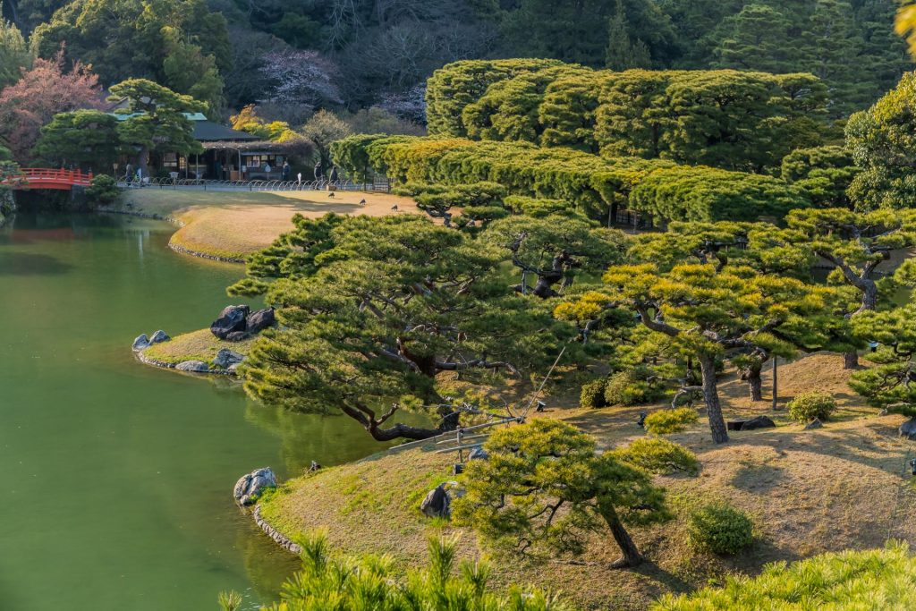 Baumpracht im Ritsurin Park auf Shikoku
