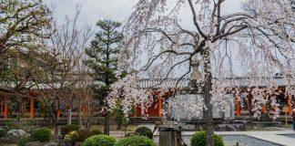 Garten des Sanjusangen-do in Kyoto