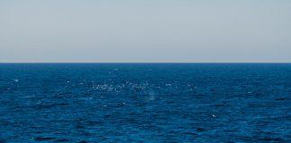 Das Nordmeer im Sommer