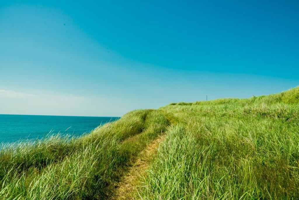Grasweg an der Küste der Magdalenen-Inseln