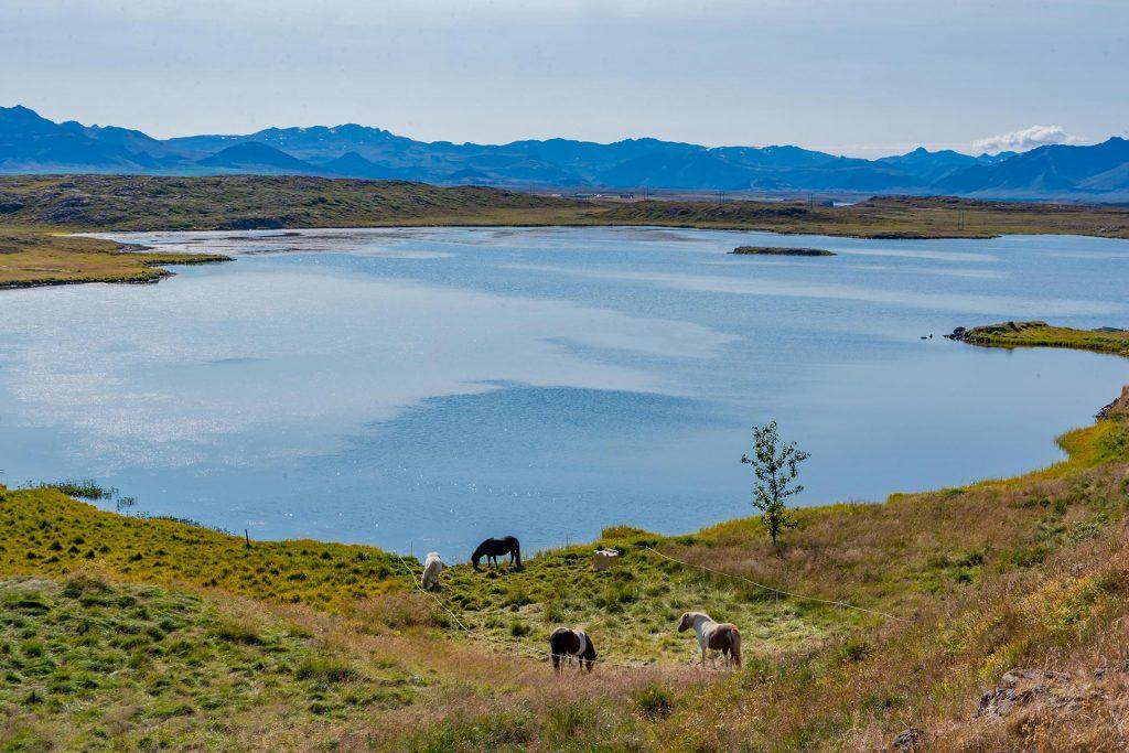 Fjord auf der Snæfellsnes Halbinsel