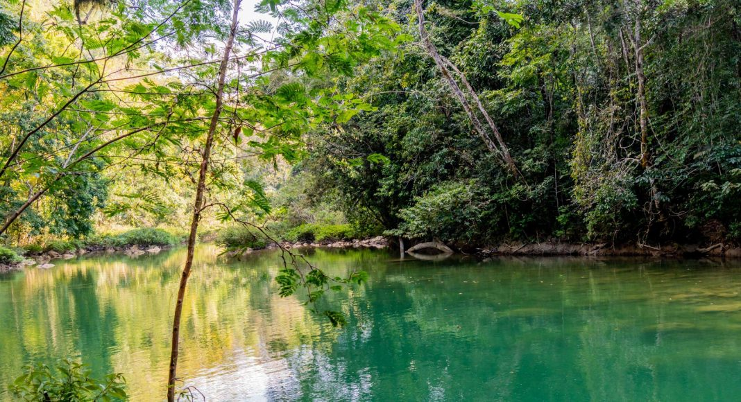 Der Blue Creek in Belize