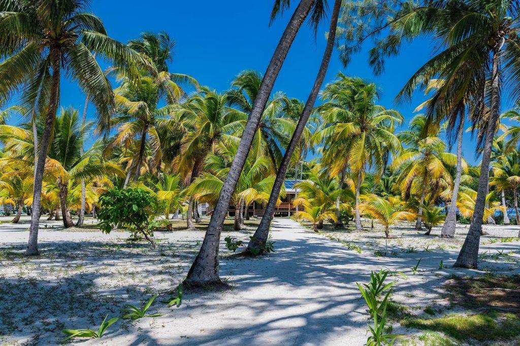 Auf Southwater Caye im Belize Barrier Reef