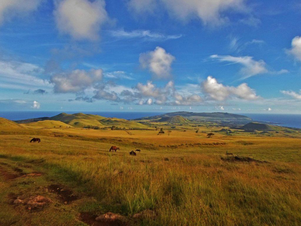 Maunga Terevaka die höchste Erhebung der Osterinsel